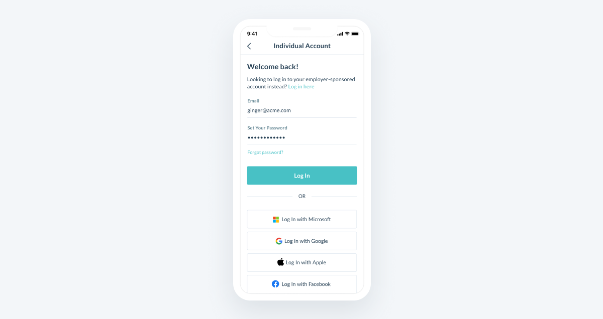 Log in screen for Individual Accounts, with social login options.